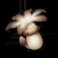 Item Philanemo Mushroom