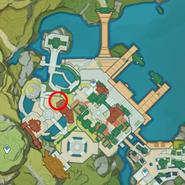 NPC Location Madame Ping