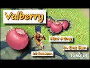 Genshin Impact 19 Node 76 Valberry in 6 min + 10 Summon