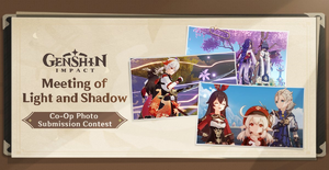 """""""Meeting of Light and Shadow"""" Co-Op Photo Submission Contest"""
