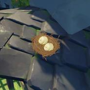 Item Bird Egg Wild