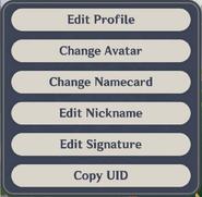 Paimon Menu Edit Profile Version 1.3