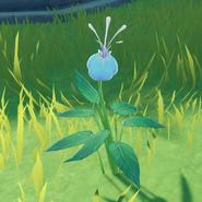 Item Glaze Lily Wild