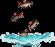 Wildlife Black-Back Bass Archive