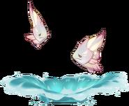 Wildlife Abiding Angelfish Archive