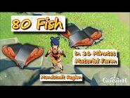 80 Fish in 16 Minutes Mondstadt Region