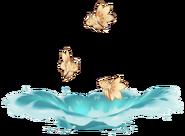 Wildlife Sweet-Flower Medaka Archive