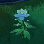 Item Glaze Lily Wild Bloom