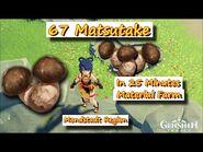 67 Matsutake in 25 Minutes Mondstadt Region