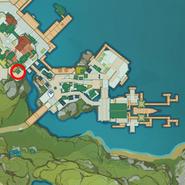 NPC Location Ferrylady