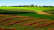 Midwest-farm-land.jpg