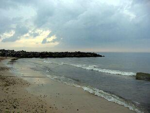 Brzeg Morza Północnego.jpeg