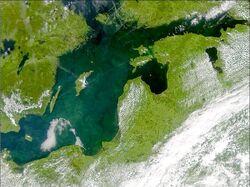 Phytoplankton bloom in the Baltic Sea (July 3, 2001).jpg