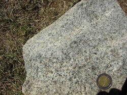 800px-Granodiorite fine-grained.jpeg