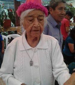 Rosa Calle