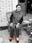 Zhu Zhengshi 110