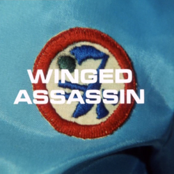 Winged Assassin