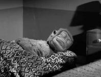 Mitch-sleeping