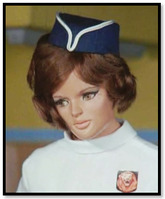Stewardess (king for a day)