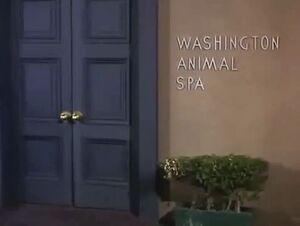 Washington-animal-spa.JPG