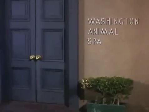 Washington Animal Spa
