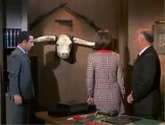 Steer-horn-conference