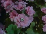 Flower-bug