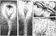 Nausicaa-manga-v4-3