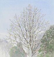 Ghibli-kaguya-dorfbaum