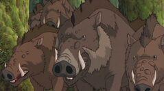 Die Wildschweine