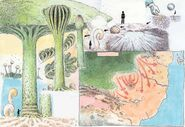 Nausicaä-zusatz-pilz-wald