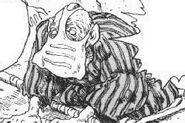 Nausicaa-manga-sapata-oberhaupt