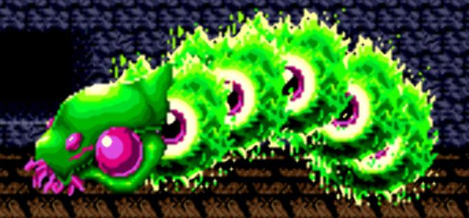 Broccoli Worm