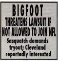 BigfootConspiracyRI