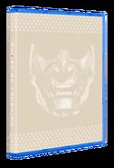 Reversible cover render