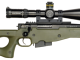 Accuracy International Arctic Warfare