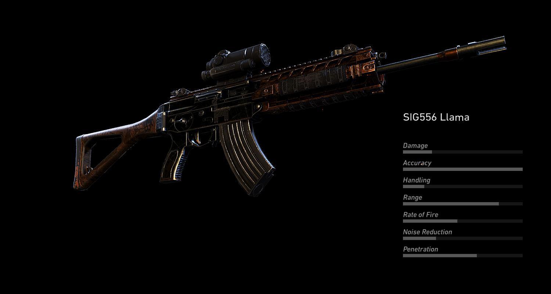 SIG556 Llama