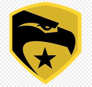 GIJoe movie insignia.jpg