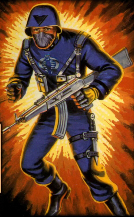 Cobra Officer