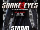 Storm Shadow (Origins)