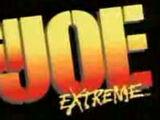 G.I. Joe Extreme (cartoon)