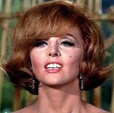 Ginger 11.jpg