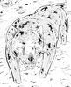 Choro GDWO vol29 pg134