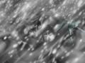 Buru Anime5