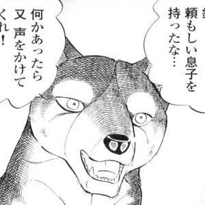 Kisaaragi 2.png