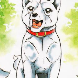 Koyuki (Weed)