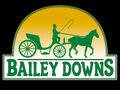 Bailey Downs Logo