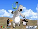 Bernard Bear Lost Episode