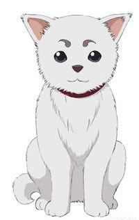 Sadaharu Gintama Wiki Fandom