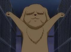 Kintarou Gintama Wiki Fandom